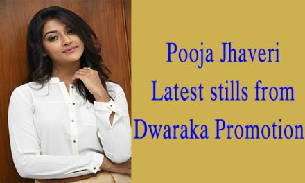 Pooja Jhaveri new stills from Dwaraka promotions