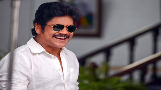 Nagarjuna Ready to make Multistarrer with Chiru, Balakrshna & Venkatesh